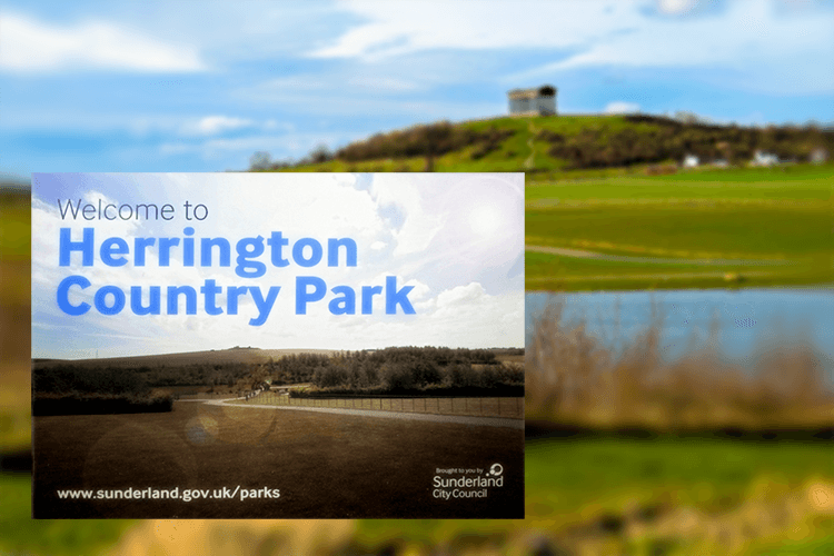 Herrington Country Park - Sunderland Council